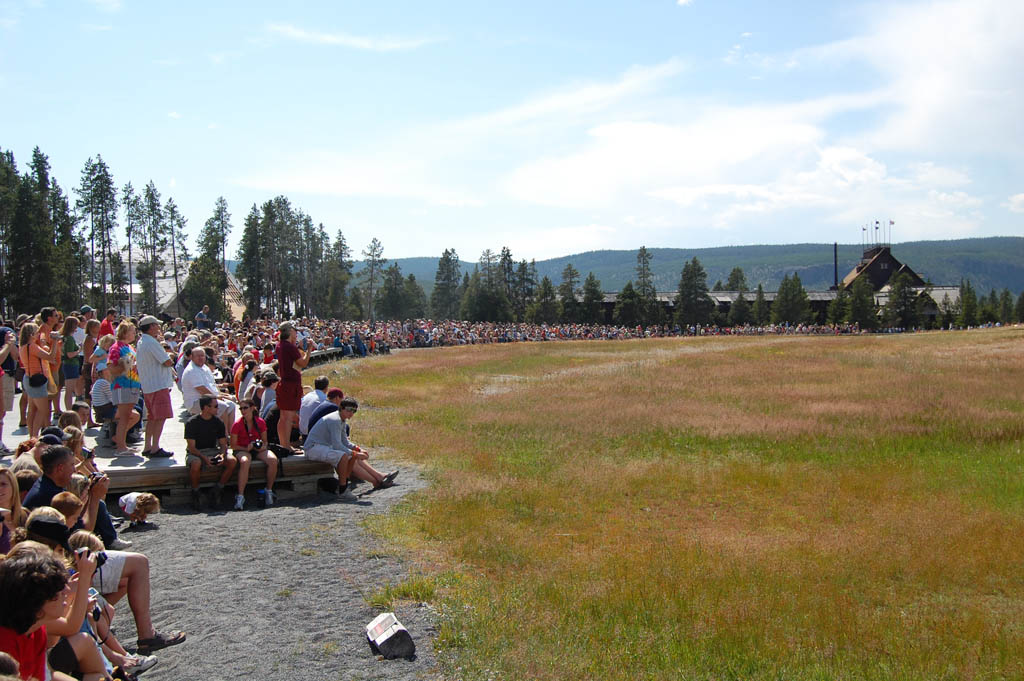 crowd gathers waiting for Old Faithful to erupt