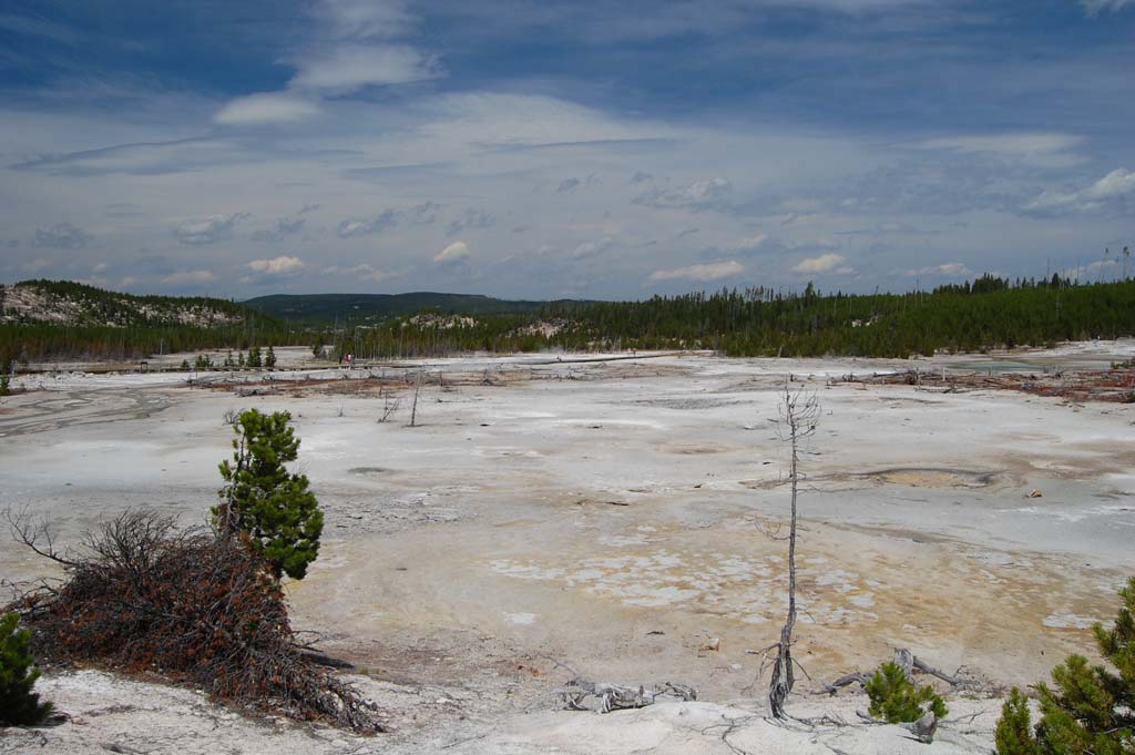 View of Norris Geyser Basin shows how desolated the area has become